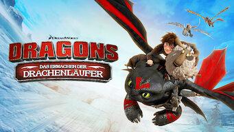 Dragons: Das Erwachen der Drachenläufer (2014)